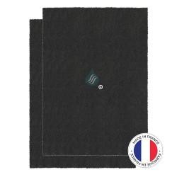 2 Filtres Anti-Odeur Au Charbon Actif - Compatible DE DIETRICH, BRANDT 79X5942